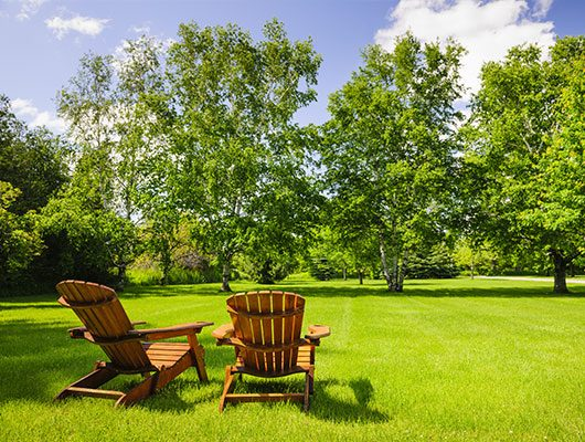charlotte nc landscaping companies